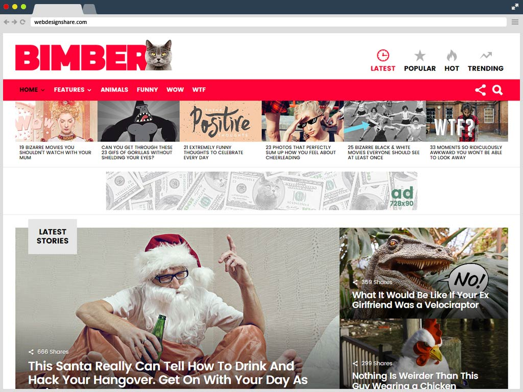 wordpress-bimber-v2-0-7-viral-buzz-temasi
